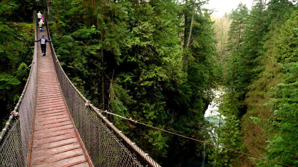 Capilano-Suspension-Bridge-Treloar-Physiotherapy-Clinic
