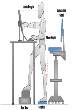 treloar-physiotherapy-clinic-ergonomics-standing-desk